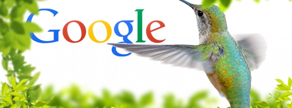 Google Hummingbird e la Local Search