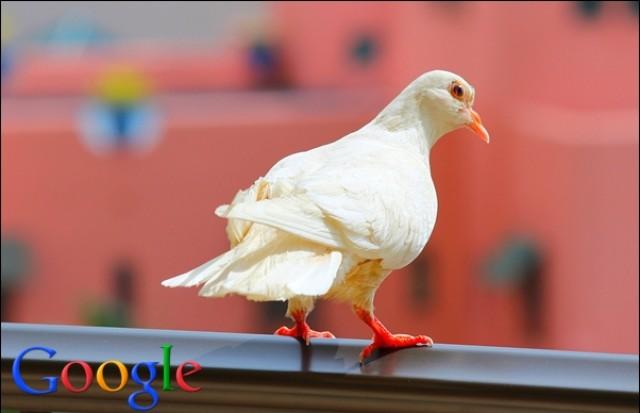 [Infografica] Una Guida pratica all'algoritmo Google Pigeon