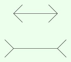illusione_ottica00.jpg
