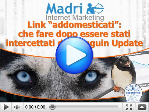 Link addomesticati - il Penguin Update